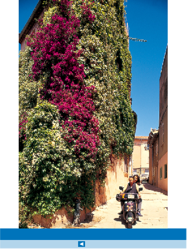 Image Gallery - Top 10 Provence and the Cote D'Azur - page 323