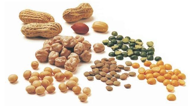Peanut  Wikipedia