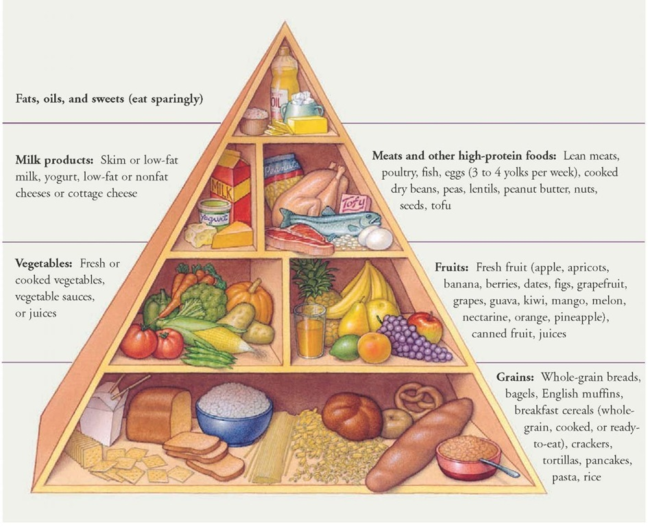 The Food Guide Pyramid was developed by the U.S. Department of Agriculture. The pyramid incorporates many principles that emphasize a plant-based diet that is low in fat, high in fiber, and rich in important vitamins, minerals, and other nutrients. All of these factors contribute to optimal health and help you to control your weight and to reduce the risk of heart disease and some types of cancer. The arrangement of the food groups in a pyramid shape calls attention to the kinds of foods to eat more of and those to eat in moderation.