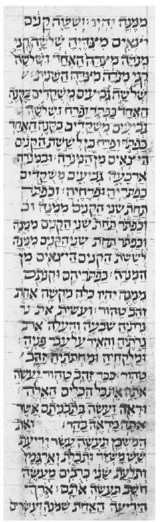 The oldest European Ms. in Italkian square script. Bible dated 979 c.E.