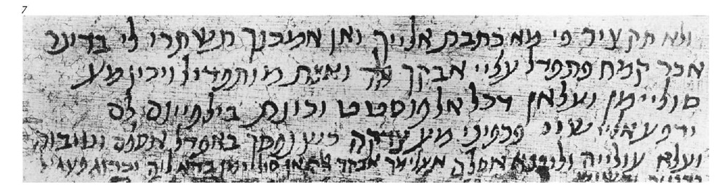 Egyptian cursive script of the eighth century c.E. S.A. Birnbaum.