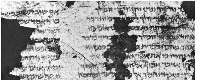 The oldest datable Bible in Egyptian square script, c. fifth century c.E.