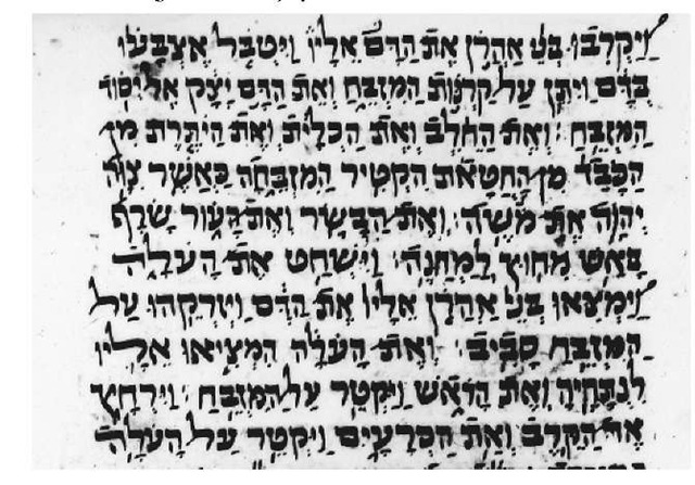 Passage from Leviticus in Parsic square script 1571 c.e.