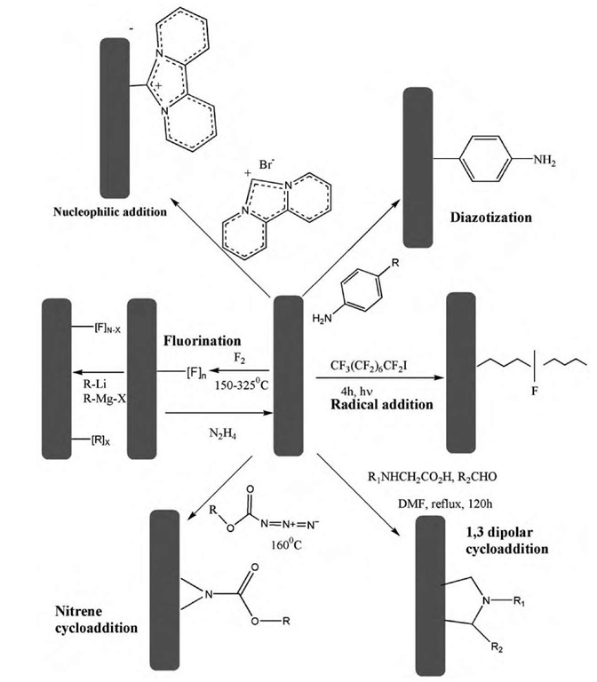 Schematic demonstrating various sidewall functionalization reactions of SWNTs.