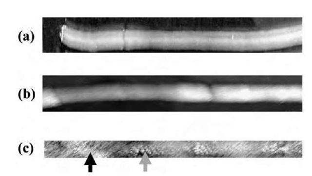 Scanning tunneling microscopy (STM) images. (a) An image of a SWNT fluorinated at 250°C for 12 hr. The approximate carbon-to-fluorine ratio by microprobe analysis is 2:1. (b) An image of a SWNT fluorinated at 150°C for 5 hr. The corresponding carbon-to-fluorine ratio, in this case, by micro-probe analysis is 3.7:1. The darker area on the left side of the image appears to be a less-fluorinated area. (c) A high-resolution image of a carbon nanotube fluorinated at 250°C for 1 hr, obtained by using a C60 functionalized STM tip.
