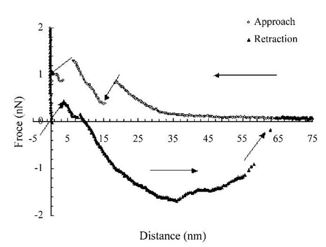 direct force measurement of liposomes by atomic force