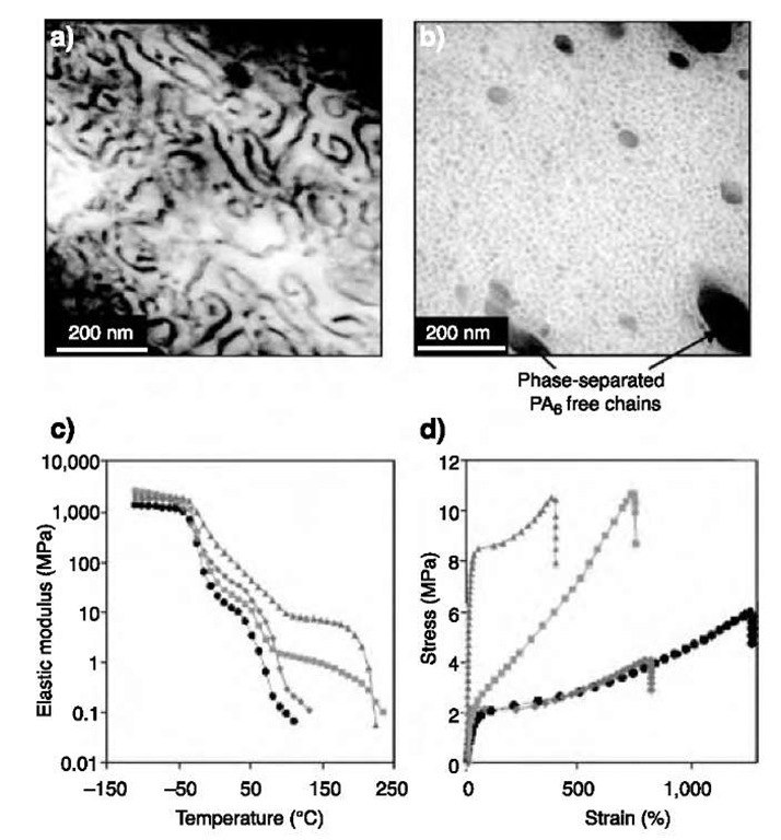 Nanostructures Derived From Phase Separated Polymers Part