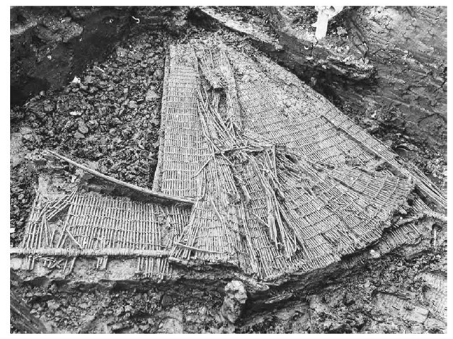 One of the three fish traps made from red dogwood twigs found at Bergschenhoek, The Netherlands.