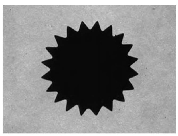 Gearlike structure that results when a small 5-mm-diameter permanent magnet, with strength of about 1200 G, is placed behind a small Isopar M ferrofluid droplet confined between glass plates with 1 mm gap.