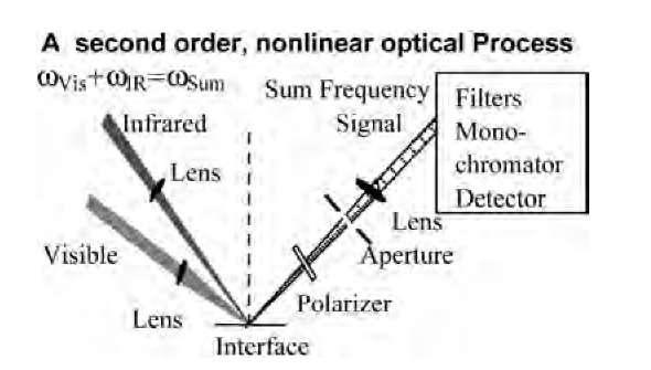 Sum Frequency Generation Vibrational Spectroscopy Studies ...
