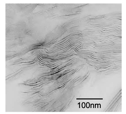 TEM image of cured 10% I.30E/Epon 862/W nanocomposite.