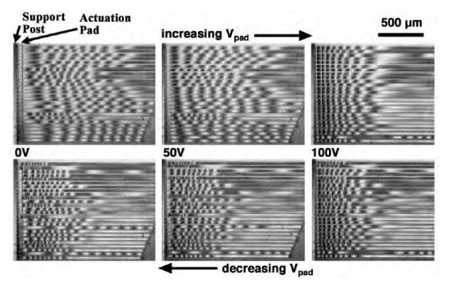 Interferograms of adhesion hysteresis observed at RH=90% after a 7-hr exposure. The images are compressed by a factor of three in the horizontal direction relative to the vertical. Twenty-five beams run horizontally, are 10 mm wide, and are spaced 5 mm apart. Their lengths are from 1500 mm (bottom of each image) to 2000 mm (top). Beams longer than 1700 mm are cut off because of the charge-coupled device (CCD) camera field limit. The voltage was increased up to 160 V before decreasing.