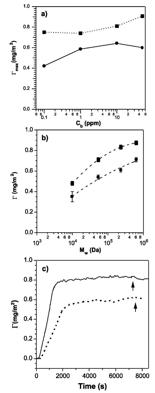 Adsorbed amount of PEO as a function of bulk concentration in solution (a) and molecular weight (b) on rough surfaces (squares) and ultra-flat surface (circles). (c) An illustration of G(t) for PEO adsorption on rough (solid line) and ultra-flat (dashed line) surfaces.