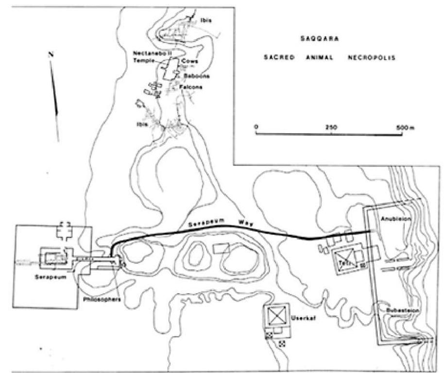 Map of the sacred animal necropolis, Saqqara