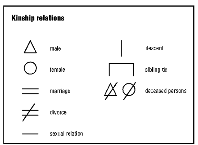 Kinship Social Science. Kinship Diagram Template Creator