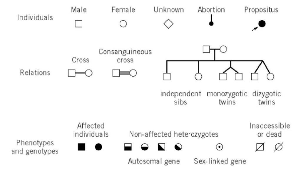 Pedigree Molecular Biology