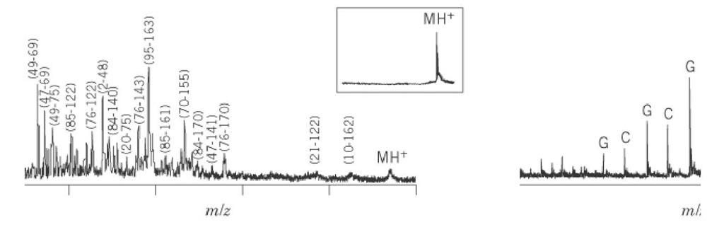 Matrix-Assisted Laser Desorption/Ionization (Molecular Biology)