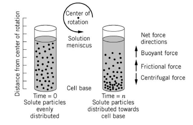 A schematic diagram of a centrifugation experiment.