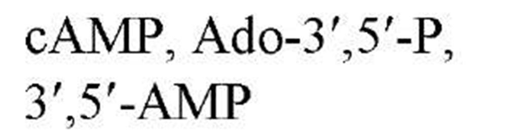 tmp2E-66