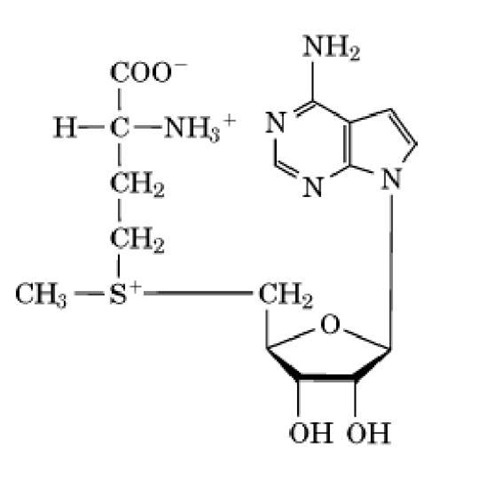 s adenosylmethionine structure  Figure 1. Structure of