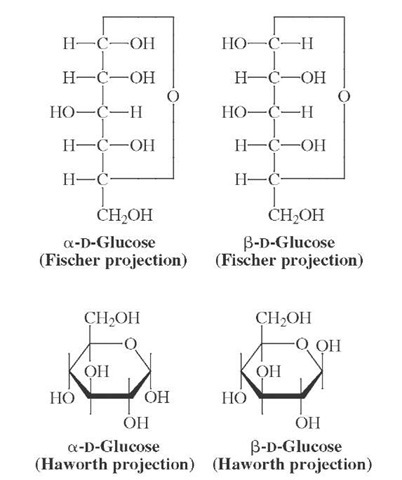 Alpha- and beta-forms of D-glucose.