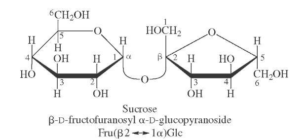 Structure of sucrose. Note that this sugar is nonreducing.