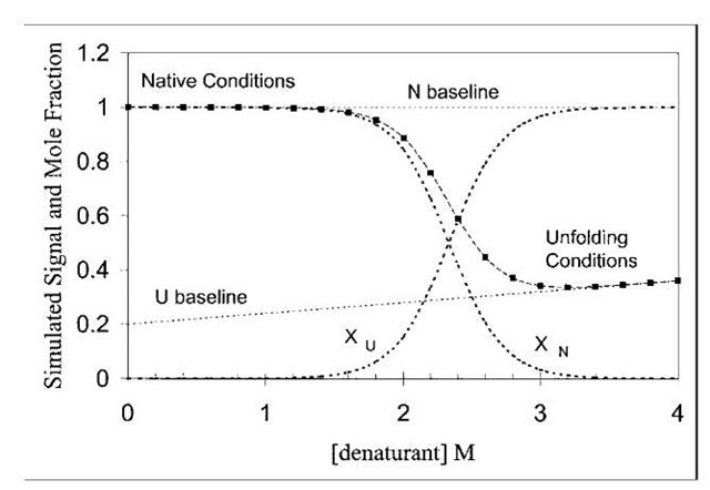 Simulation of denaturant-induced unfolding of a protein in a two-state manner. A simulated fluorescence signal (■) is plotted vs. denaturant concentration for a protein, using Eq. (8). The simulated fluorescence signal decreases with addition of denaturant because the unfolded species has a smaller fluorescence signal (fluorescence i s quenched on unfolding). The pre- and post-transition baselines may slope, as shown. The fraction of unfolded species (XU ) increases from left to right as the fraction of native species (XN) decreases.