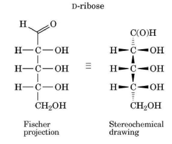 how to draw diastereomer of fischer projection
