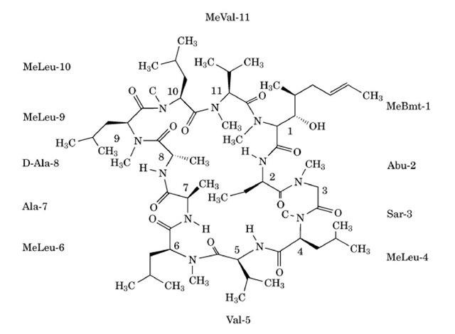 cyclosporin  molecular biology