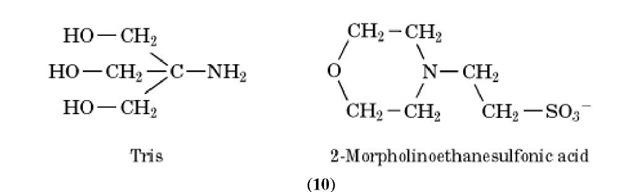 Buffers (Molecular Biology)