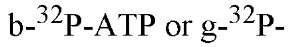 tmpFF-367_thumb