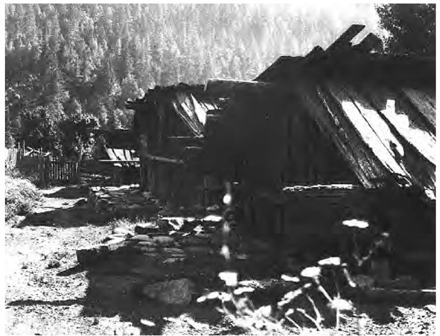 Yurok village dwellings, like the ones pictured in this 1890 photograph, were small rectangular redwood-plank houses with slanted or three-pitched roofs and a central excavated pit.