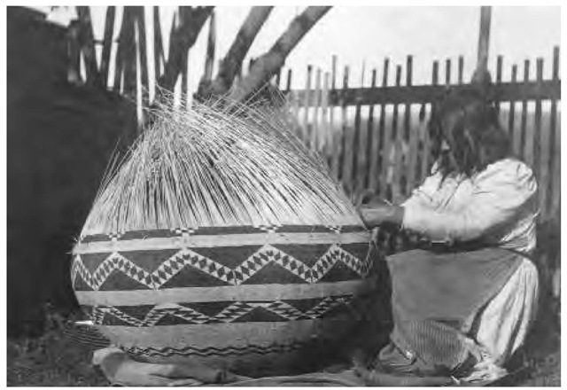 A Pomo woman weaving a basket. Pomo baskets were of extraordinarily high quality. Unlike the custom in many tribes, men also assisted in making baskets.