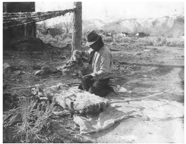 For the Washoe who lived in the high and often cold deserts of California and Nevada, rabbit-skin blankets and robes were important for clothing and bedding. The Washoe man pictured here is weaving a blanket.