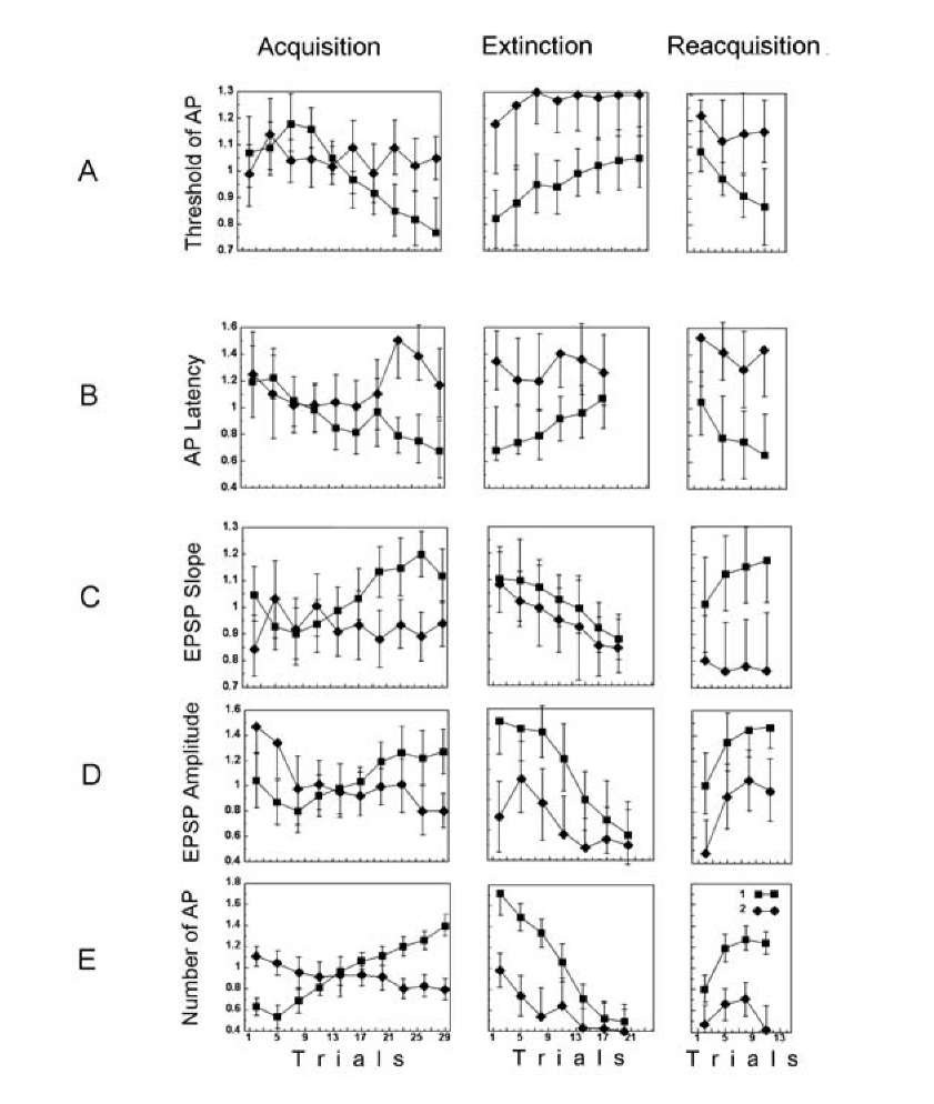 Behavior of neuronal activity during acquisition, extinction and reacquisition. The symbols are denoted in the figure (E), 1 - responses to the CS+, 2 - responses to the CS- vs. the trial number. For each neuron the corresponding characteristics were normalized to a mean response - separately for acquisition, extinction and reacquisition. A- AP thresholds; B- AP latencies; C - slope of the EPSP; D - EPSP amplitudes. The values and confidence intervals (p < 0.05) in the plots (A-D) are calculated by means of a two-way ANOVA with interactions between the trial number and the type of stimulus - CS+ or CS-. E the number of APs, the time window over which the APs were counted was 0.5 s; medians and confidence intervals are shown (Mann-Whitney U test, p < 0.05). AP latency in response to tactile stimulus was measured from the onset of the EPSP to the onset of the AP. The slope of the EPSP was measured as the tangent of the angle of the EPSP growth. The EPSP amplitude was measured when a neuron failed to generate AP, the AP threshold and latency when a neuron generated an AP in the response, while EPSP slope and number of APs in the response were recorded for every response.