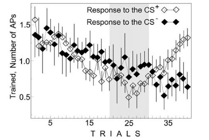 Change in AP number during instrumental conditioning in the response to the CS+ and CS~ in the trained neurons of mollusk Helix. Ordinate, AP number; abscissa, number of trials; medians and confidence intervals are shown. Symbols are at the Figure.