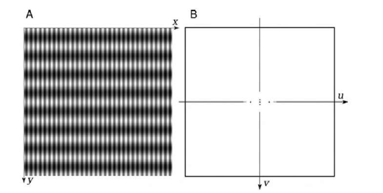 Two-dimensional Fourier transform. The spatial-domain image (A) contains periodic sinusoidal intensity variations; the image size is 512 x 512 pixels. Along the y-axis there are eight full waves, and along the x-axis, 32. Its Fourier transform (B, inverted with dark dots representing peak values for better visualization) shows five peaks. The central peak represents the image average. The two peak pairs along the u and v axes are the positive and negative frequency of the sinusoidal intensity variations along the x and y axes, respectively, of the original image. The spatial frequency along the x-axis is higher than that along the y-axis; correspondingly, the peaks on the u-axis are at higher u values (farther away from the origin) than are the peaks on the v-axis.