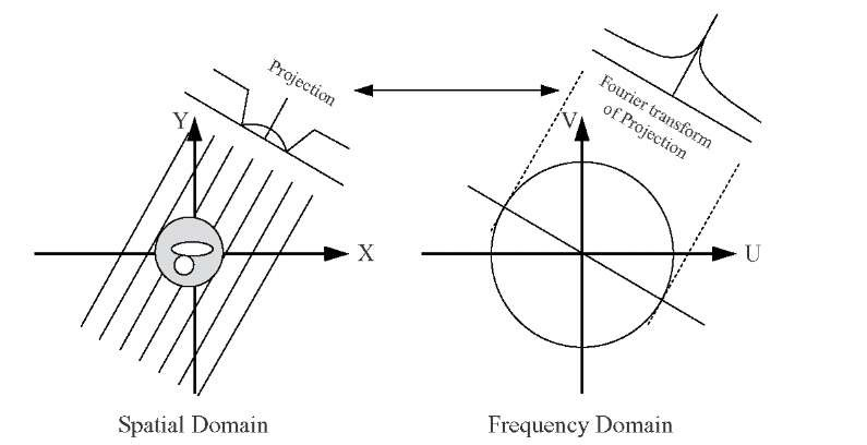 The Fourier slice theorem relates the one-dimensional Fourier transform of a projection to a slice through the two-dimensional Fourier transform of the object along a line through the origin at the same angle as the projection.