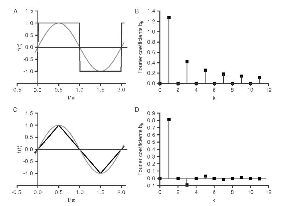 Fourier analysis of two periodic functions. A square function (A) and a triangular function (C) are shown next to a sine wave (gray curve in A and C). Solving the integrals in Equation (3.3) yields ak = 0 for all k in both cases as a consequence of the symmetry. The bk are plotted in B for the square wave and in D for the triangular function. It can be seen that the Fourier coefficients of the triangular function drop off more rapidly for higher k than those of the square wave, because the triangular function is more closely related to the sine wave than is the square wave.