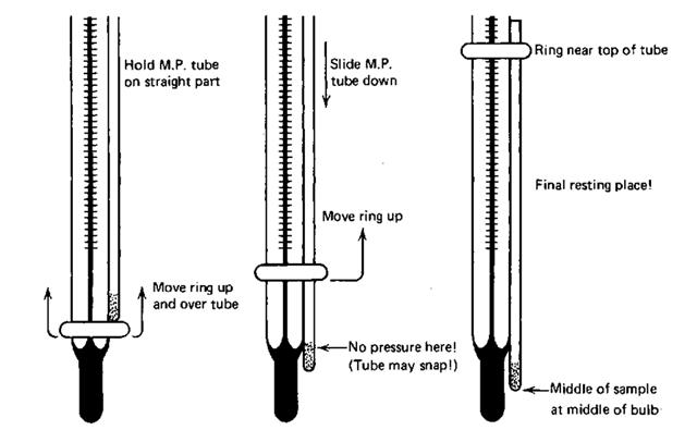 thomas hoover melting point apparatus