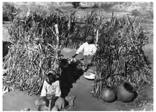 In this roofless Papago kitchen a young girl scrapes corn; the woman inside is cooking tortillas (1895).