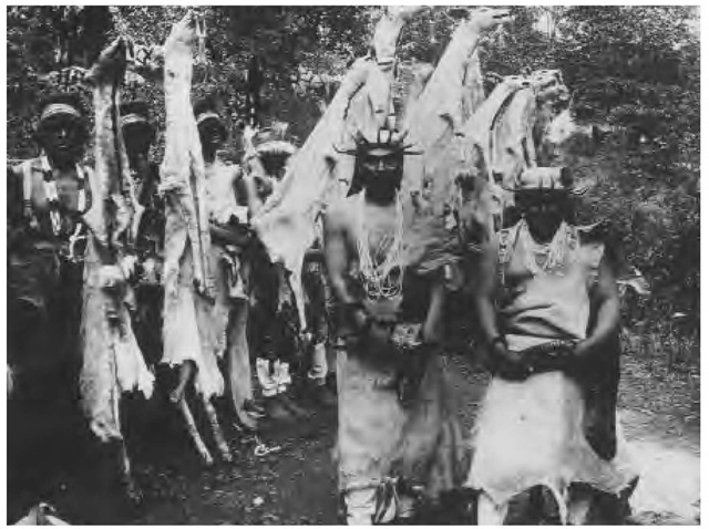 The Hupa celebrated annual World Renewal ceremonies, for which shamans performed secret rites and performed dances such as the White Deerskin Dance and the Jumping Dance. These men are participating in the White Deerskin Dance in the 1890s.