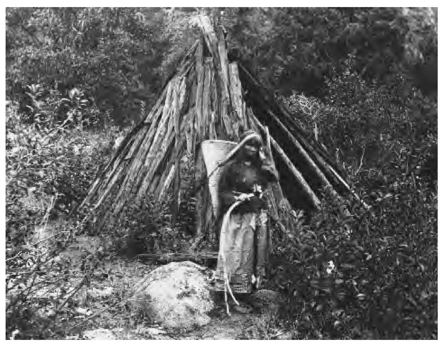 Miwok Native Americans Of California