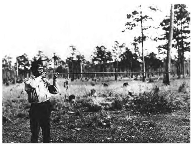 A widely employed raw material, cane was used to make baskets and mats, arrows and darts, musical instruments, and many other items. This man is using a cane blowgun (1912). Used to hunt smaller animals and birds, these blowguns were accurate up to 60 feet. Animals were shot with darts blown out of long, hollow cane stems.