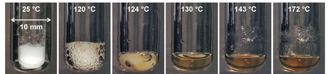 Polymerization of Mendomer.