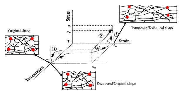 Thermo-mechanical cycle of a thermally induced shape memory polymer