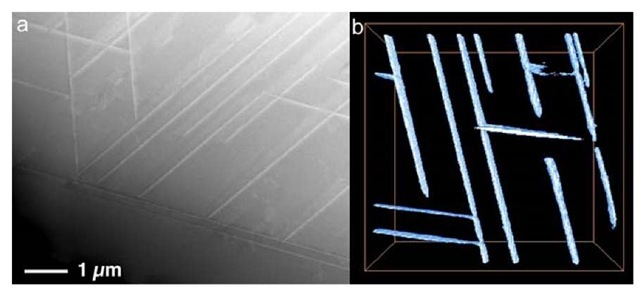 STEM-HAADF image (a) and a snapshot of reconstructed 3D image (b) of a Co-Ni-Cr-Mo superalloy.
