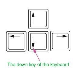 The down key of the keyboard