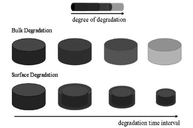 Schematic of bulk and surface hydrolytic degradation[3]
