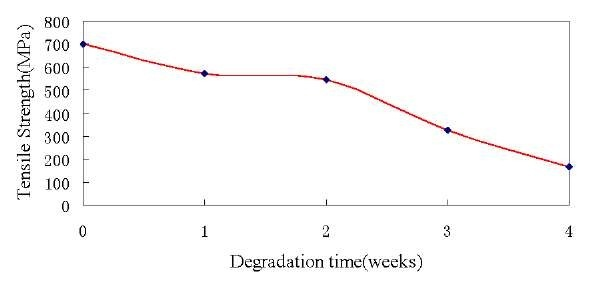 Tensile strength at break at different degradation weeks